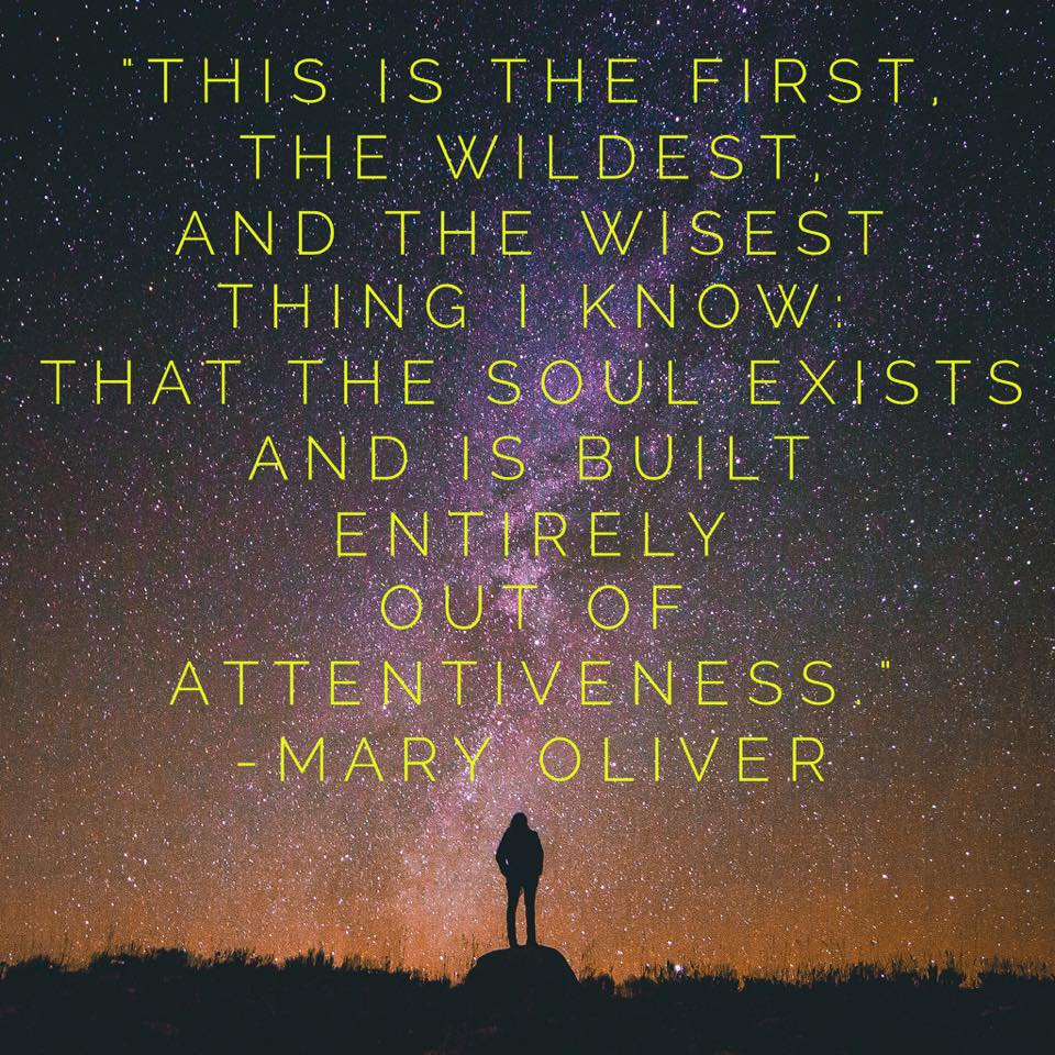The Soul Exists – Mary Oliver